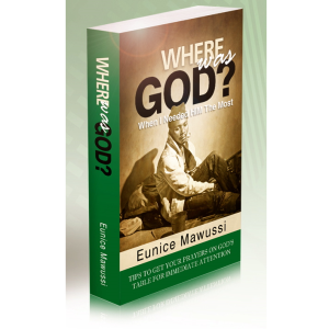 WHERE WAS GOD-book by Eunice Mawussi Baza Baza